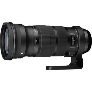 Sigma 120-300mm for Canon